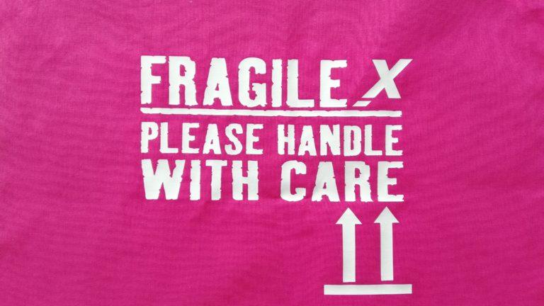 """Unser """"FraX-Wochenende"""" – dabei sein ist alles!"""